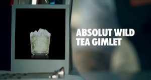 ABSOLUT-WILD-TEA-GIMLET-DRINK-RECIPE-HOW-TO-MIX