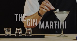 How-To-Make-The-Gin-Martini-Best-Drink-Recipes