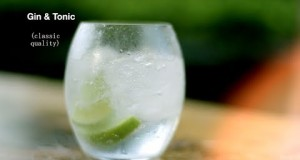 How-to-make-the-best-Gin-and-Tonic