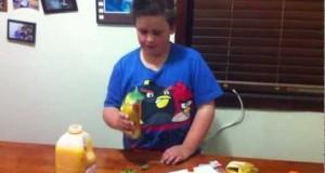 cooking-healthy-fruit-juice-all-seasons-juice-recipe