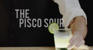 How To Make The Pisco Sour – Best Drink Recipes